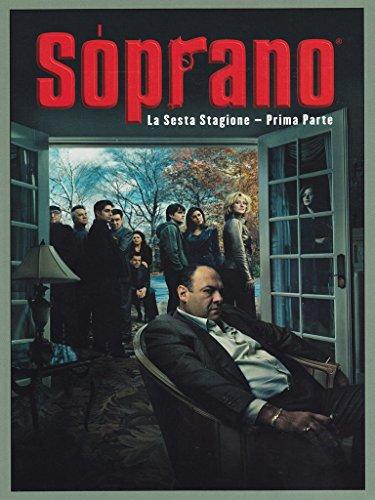 I Soprano(cofanetto da collezione)Stagione06Volume01Episodi01-12 [4 DVDs] [IT Import]