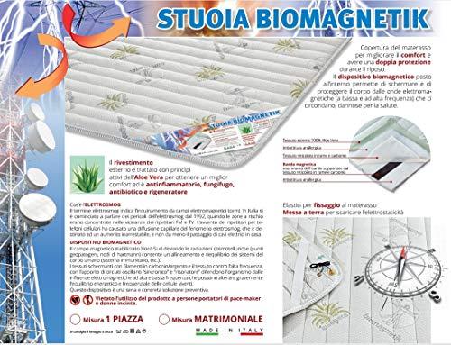 BNZ Group [Matrimoniale],coprimaterasso, stuoia biomagnetica, Made in Italy, miglior Comfort. Fodera Aloe Vera,...