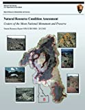 Natural Resource Condition Assessment: Craters of the Moon National Monument and Preserve: Natural Resource Report NPS/UCBN/NRR?2012/602