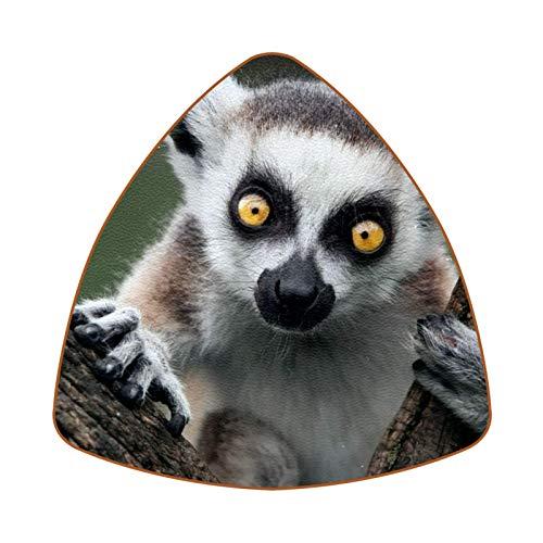 Lemur Set mit 6 Untersetzern für Getränke, Tasse, Flasche, Tasse, Kaffee, Bier