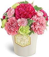 【母の日ギフト】グラマラス(ピンク) mt01az-521253 花キューピット 女性 お母さん ママ 母 祖母 誕生日 プレゼント カーネーション