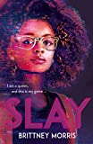 SLAY: the Black Panther-inspired novel about virtual reality, safe spaces and celebrating your...