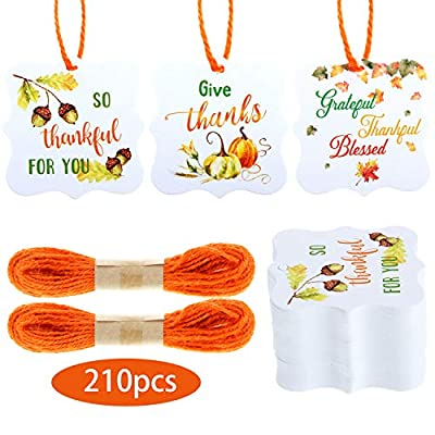 210 Pieces Autumn Pumpkin Thanksgiving Thank You Tags with Holes Fall Kraft Tags Hang Labels 3 Style Tags and 66 Feet Twine Rope for Thanksgiving, Wedding, Baby Shower, Party Favors