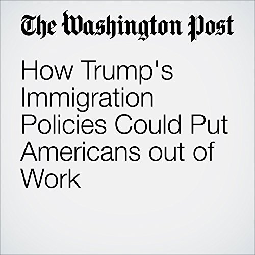 How Trump's Immigration Policies Could Put Americans out of Work audiobook cover art