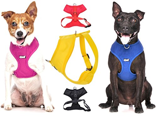 Dexil Elite Range Luxury Padded Waterproof Adjustable Back and Front Ring Non-Pull Medium Pet Dog Vest Harness (Royal Blue, Medium 19-28inch Chest)