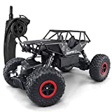 Sugoiti Remote Control Crawler Car, RC Cars Off-Road Rock 4WD 2.4Ghz 1: 18 Vehicle, Remote Control Cars Electric Fast Racing Buggy Hobby Car with 2 Batteries, for Kid Adult (Black)