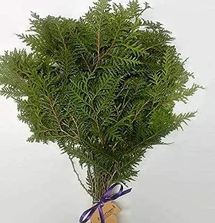 Tin Roof Treasure Fresh Cedar Boughs, 8
