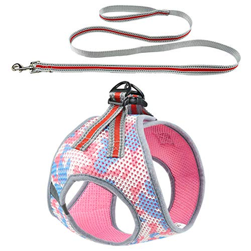 DYAprWu Breathable Air-mesh Dog Harness and Leash Set Step-in Vest Harness and Leash Set for Small Medium Dodgs and Cats (S(Neck Girth 12.5'/Chest Girth 14'), Pink)