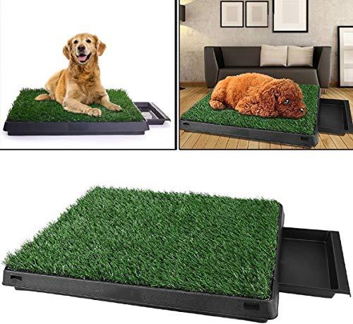 Pujuas Hundetoilette für Hunde, Hundeklo Hunde WC, Welpentoilette Hunde Toilette Trainingsunterlage Gras mit Ungiftig Kunstrasen 63 x 50x 7(L x B x H) cm