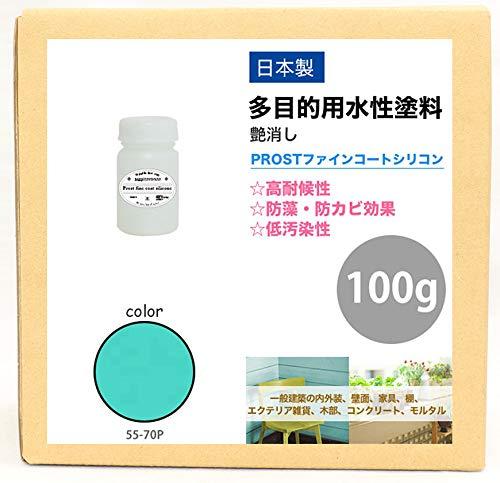 屋外用 多目的用 水性塗料 55-70P ターコイズブルー 100g/艶消し 内装 外装 壁 屋内 ファインコートシリコン つや消し 多用途