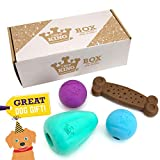 Chew King Dog Box XLarge- Durable Fetch Balls, Treater and Chewing Toy Collection, Teal, CM-10101-CS01