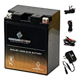 YB14L-A2 Battery with 0.5 Amp Charger - Bundle of 2 items