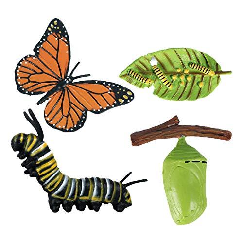 Harilla Lebensdauer Zyklus von Schmetterling-Enthält Ei, Larve, Pupa, und Schmetterling-Educational Hand Gemalt Figuren für Altersgruppen 4 und Up