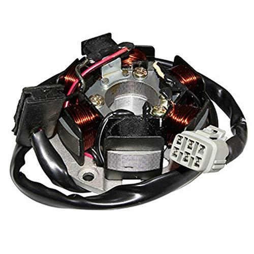 P2R (gemotoriseerd) stator ontsteking 50 A aanpasbare box CPI 50 SM, SX (R O. 51A-21130-20-00) (AVEC Platine P2R-