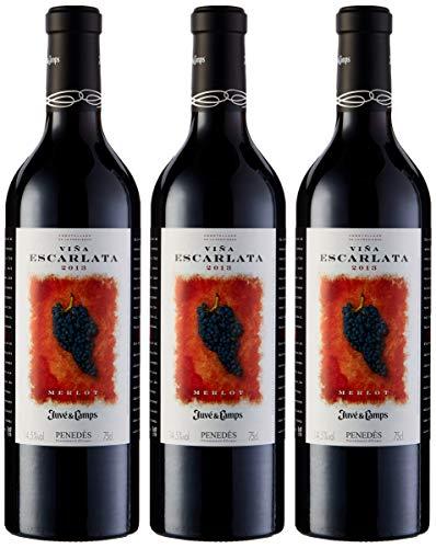 Juvé & Camps   Vino Reserva Tinto Viña Escarlata   Pack de 3 botellas de 75 cl   D.O Penedes   Merlot