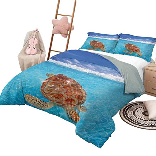 DayDayFun Quilt Set with Sheets Turtle Quilt Set for Children Sea Turtle Chelonia Mydas on Water Surface Caribbean Beach Tropics Full Size Violet Blue Aqua Pale Brown