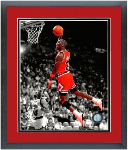 Chicago Bulls NBA Framed 8x10 Photograph Team Logo and Basketball