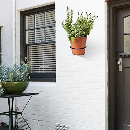 AOBAMA plant pot holder,3 pcs Metal Wall Mounted Bracket Planter Hook Flower Pot Ring For Indoors Balcony 10 Cm Ring Holder Flower Planter-C_Black