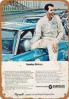 金属看板プリマスのための1966人のリチャードペティ住宅装飾の壁画のポスター