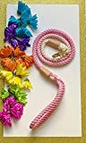 BULPET Eco Friendly Natural Cotton Handmade Dog Ombre Pink Rope Leash with Genuine Leather and Gold Brass Hardware/ 5 Ft/ All Dogs