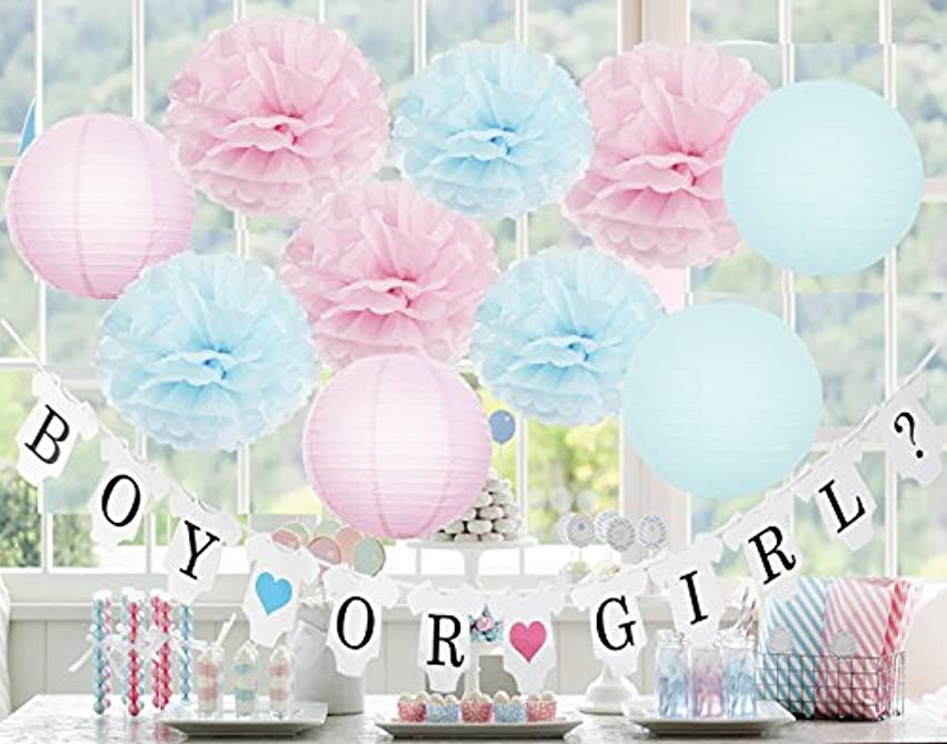 Gender Reveal Party Supplies Gender Reveal Decorations BOY OR Girl? Banner with Tissue Pom Poms Paper Lanterns Baby Blue Pink for Birthday/Pink and Blue Decorations