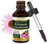 Echinacea Goldenseal Liquid Extract | 2 fl oz | Alcohol Free Tincture Drops | Vegetarian, Non-GMO, Gluten Free | by Horbaach