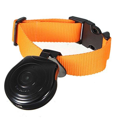 Digital Pet Collar Cam Camera DVR Video Recorder...