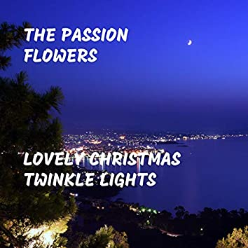 Lovely Christmas Twinkle Lights