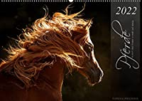 Pferde - Anmut und Staerke gepaart mit Magie (Wandkalender 2022 DIN A2 quer): Fotos aus Liebe zum Detail (Monatskalender, 14 Seiten )