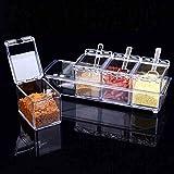 XKMY Tarros de especias 4 unids/set Cocina Especias Tarro de Plástico Transparente Condimento Cajas de Sal Pimienta Condiment