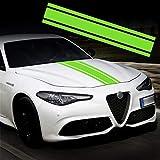 TOMALL 124cm x 22cm Adesivo a Strisce per Cofano Auto Auto da Corsa Adesivo per carrozzeria a Strisce Laterali Gonna per Tetto Adesivo per paraurti Decorazione in Vinile per Auto (Verde)