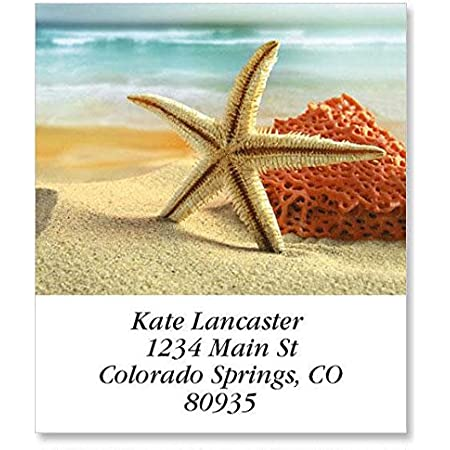 p 250 30 Personal Return Address Labels Beach Seashells Starfish