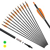 KESHES Archery Carbon Arrows for Compound & Recurve Bows - 30 inch Youth Kids and Adult Target Practice Bow Arrow - Removable Nock & Tips Points (12 Pack) (Orange)