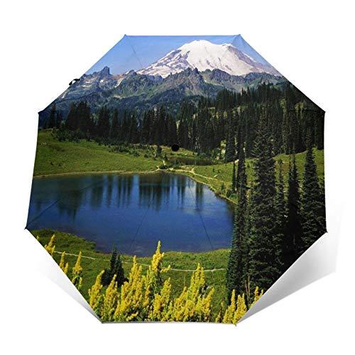 Regenschirm Taschenschirm Kompakter Falt-Regenschirm, Winddichter, Auf-Zu-Automatik, Verstärktes Dach, Ergonomischer Griff, Schirm-Tasche, Berg 88