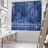 Toopeek - Cortina de invierno resistente al desgaste, color cisnes, natación, lago atardecer, bosque, dramática, naturaleza idílica, icy, clima nevado, escena rural, impermeable, tela de 52 x 63 pulgadas, color azul