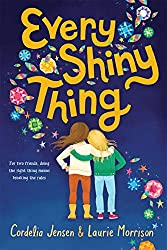 every shiny thing book cover