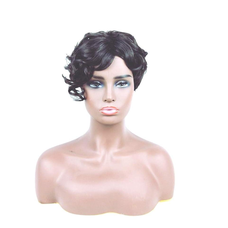 動機配偶者チーターSummerys ショートカーリーヘアウィッグ人工毛フルウィッグ自然に見える耐熱性女性用