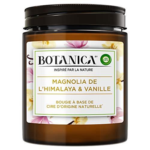 Air Wick Botanica Bougie Parfumée Cire d'Origine Naturelle Magnolia & Vanille 205g