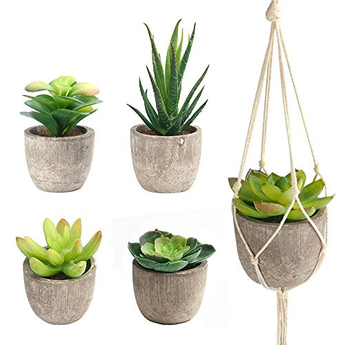 """FEPITO 5 Pcs Artificial Succulent Plants with 2 Pcs Plant Hangers,2.4"""" Mini Faux Succulents Artificial Cactus Aloe Echeveria with Gray Pots Hanging Stems Bulk for Home Indoor Decoration"""