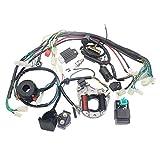 Ballylelly Sistema eléctrico Bobina del estator CDI Arnés de cableado para 4 Tiempos ATV KLX 50cc 70cc 110cc 125cc Quad Bike Buggy Go Kart Pit Dirt Bikes