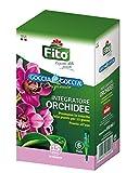 Fito X101001 Goccia Orchidee, Verde, 8.1x5.6x14 cm...