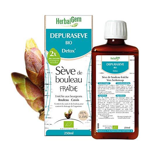 HerbalGem | Depuraseve Bio Detox | Sève de Bouleau Fraîche | Extraits de bourgeons de Bouleau et de Cassis | 250 ml