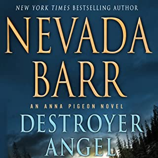 Destroyer Angel audiobook cover art