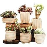 winemana 6 Pcs Set 3 Inch Ceramic Succulent Plant Pot, Wooden Pattern Succulent Planter Container Bonsai Cactus Pots