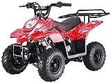 Mini Quad Motore 4 Tempi 110cc NCX Moto Tao Jambo R7 Spider Rosso
