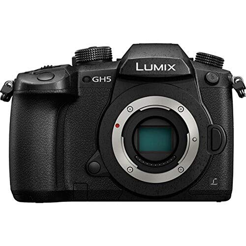 $600 off a Panasonic Lumix digital camera