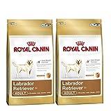 2 x 12 kg Royal Canin Labrador Retriever 30 Multi-Buy Adulto comida para perro