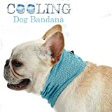 Vsing Dog Cooling Collar Dog Instant Cooling Bandana Pet Breathable Scarf Dog Ice Collar for Summer (13.8'-21.6') (S (Neck Girth 13.8'))
