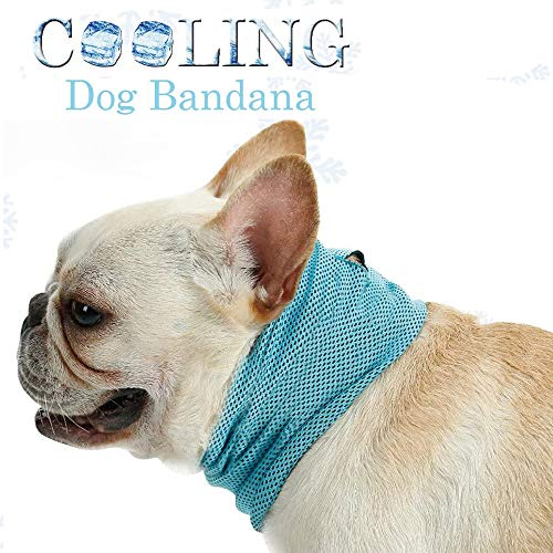 """Vsing Dog Cooling Collar Dog Instant Cooling Bandana Pet Breathable Scarf Dog Ice Collar for Summer (13.8""""-21.6"""") (L (Neck Girth 21.6""""))"""