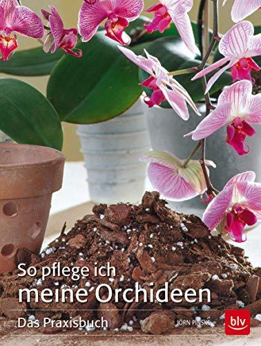 So pflege ich meine Orchideen: Das Praxisbuch